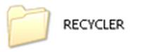 Что за папка Recycle
