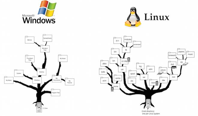 Структура файловой системы Windows и Linux